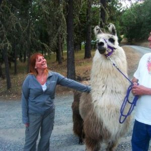 Patriot-our-lead-llama